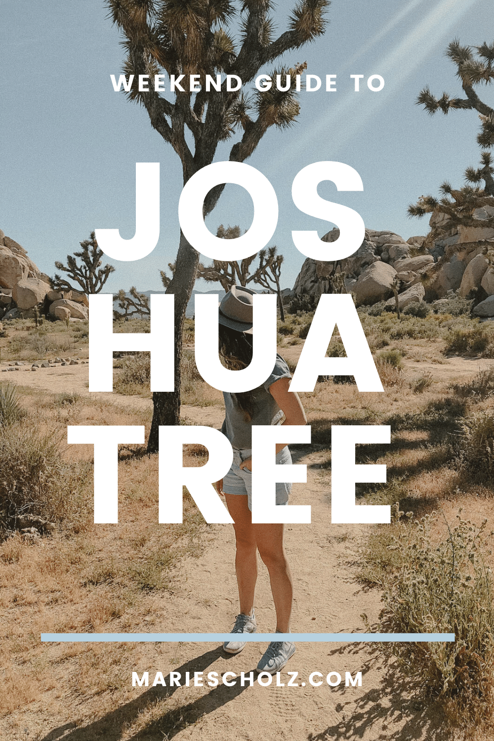 joshua tree weekend guide (1)