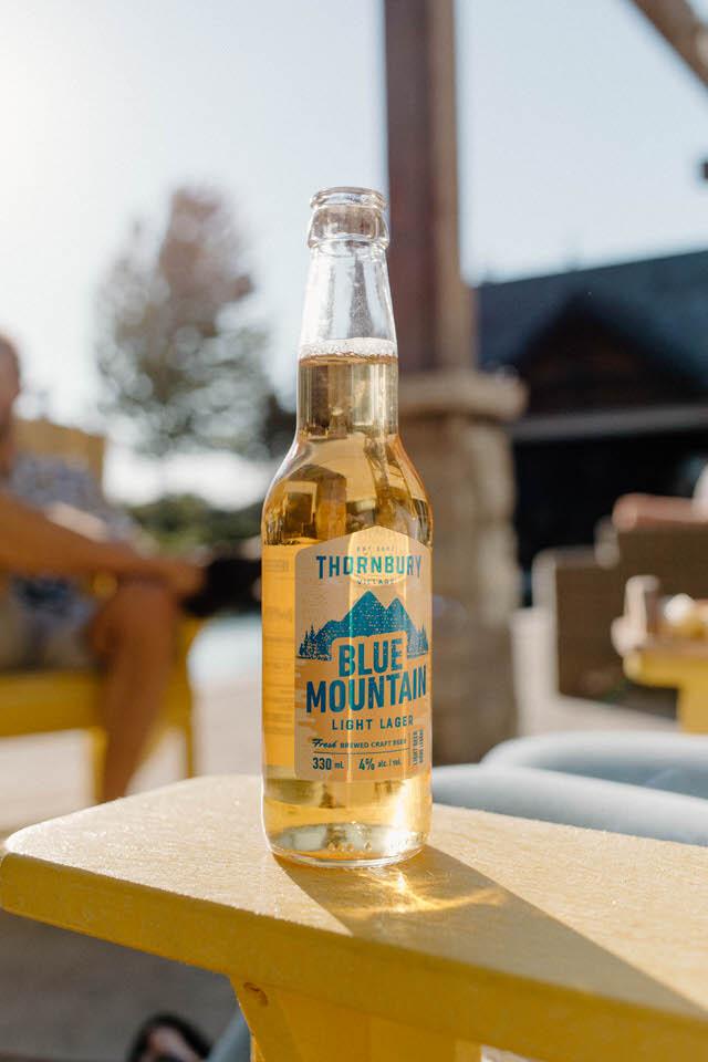 blue-mountain-ontario